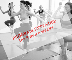 TONE & FEET - EXTENDED FOR 5 MORE WEEKS (Live ZOOM Classes)