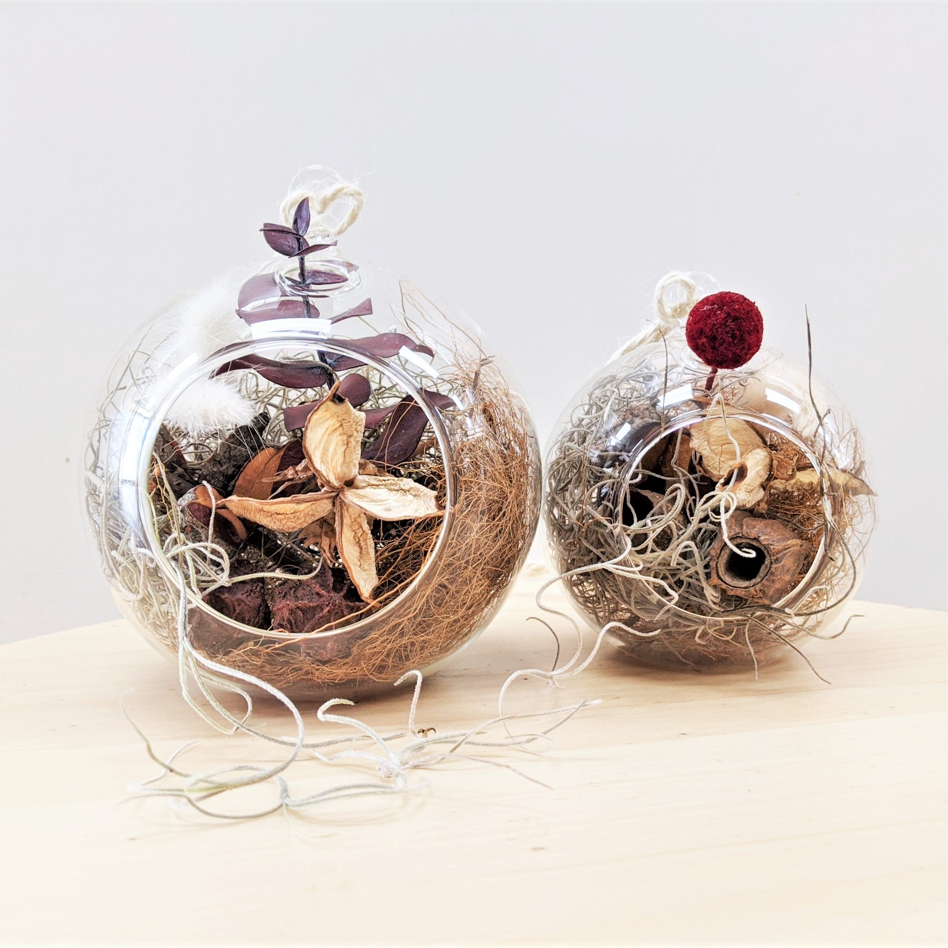 Blue Mountains Florist Botanical Art Lawson Christmas Baubles Dried Everlasting Arrangement Set
