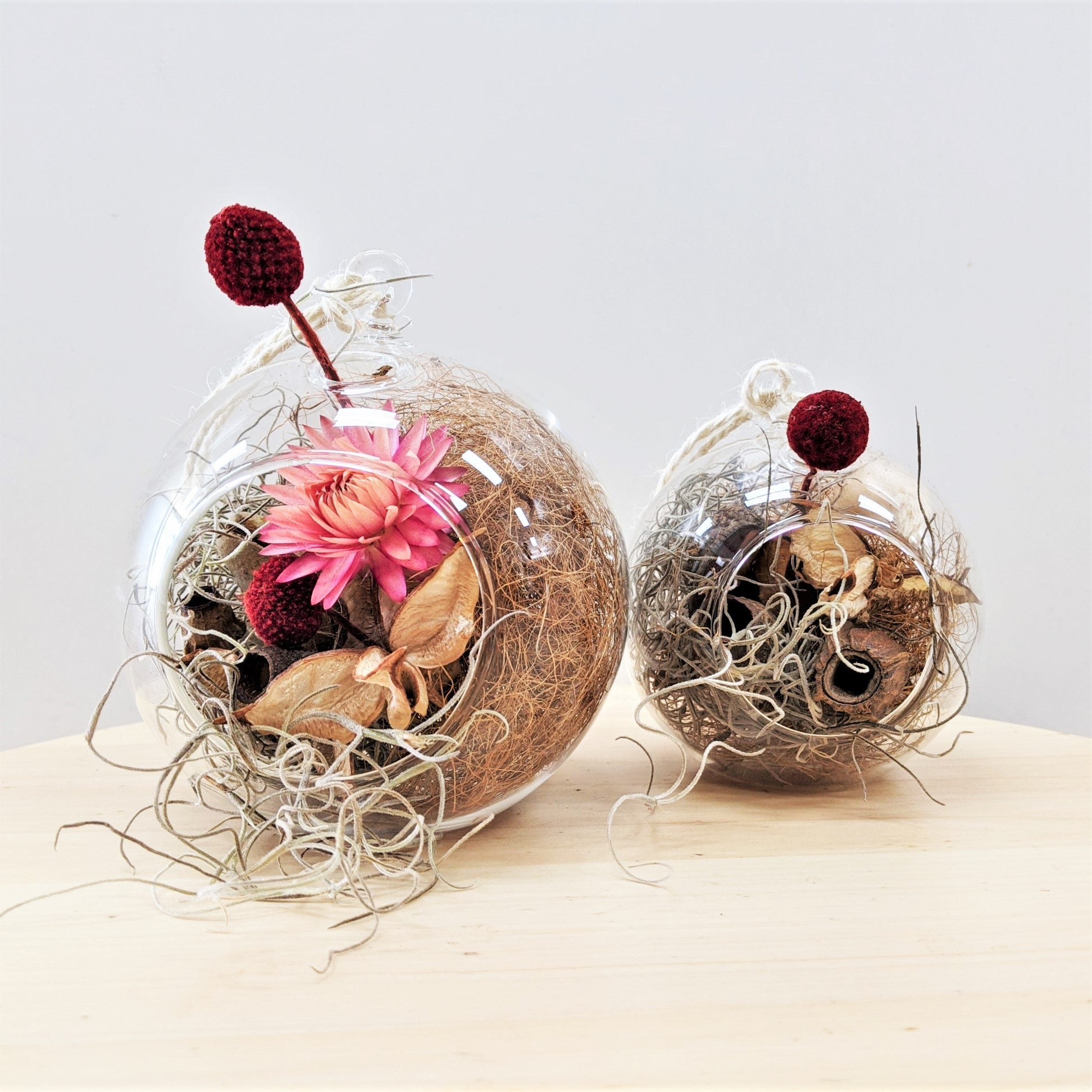 Blue Mountains Florist Botanical Art Lawson Christmas Baubles Dried Everlasting Arrangement Large Pair