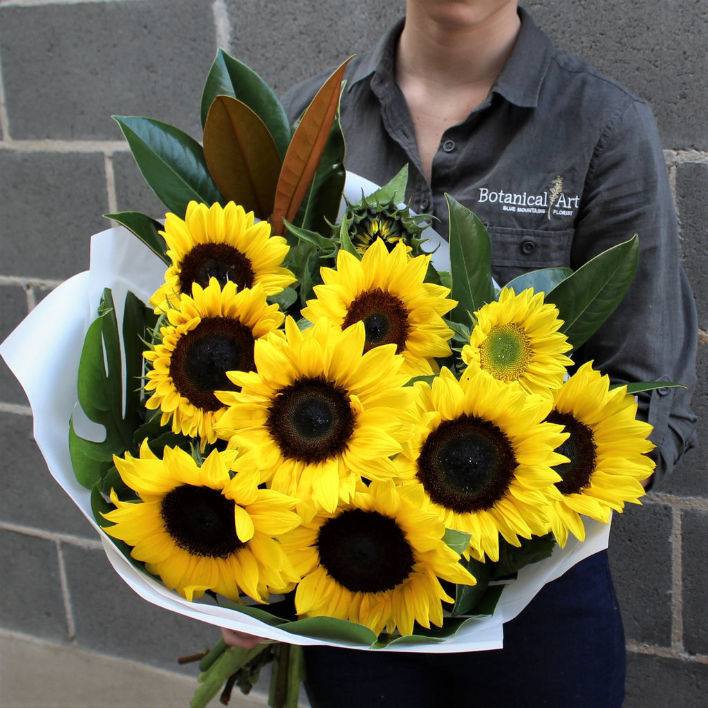 Blue Mountains Florist flower delivery lawson florist sunflower bouquet