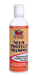 Natural Flea Shampoo