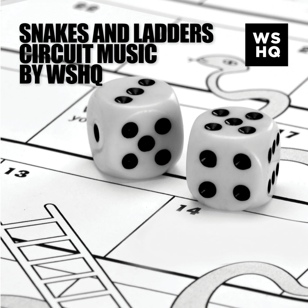 Snakes & Ladders Circuit