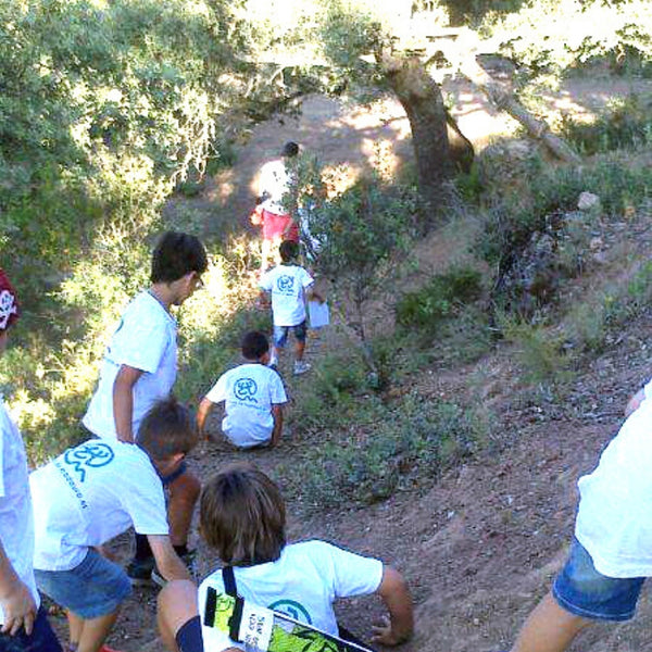 Excursiones escolares y naturales, ¿innovación educativa?