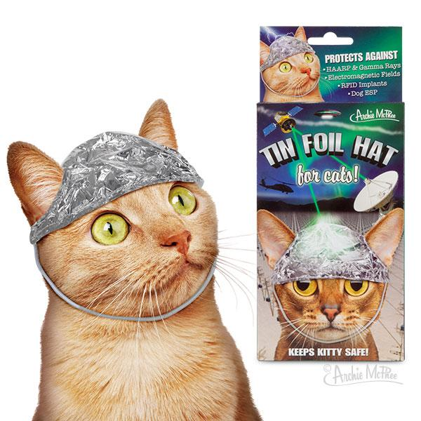 NOVELTY CRAZY CAT LADY TIN HAT FOR CAT