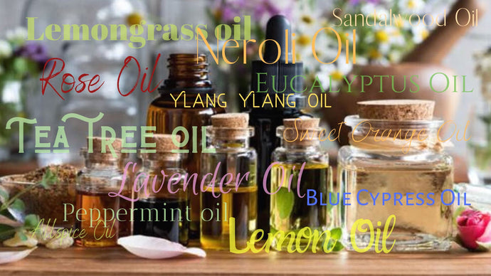 Wellness in Doses - Your Essential Guide to Body Oils