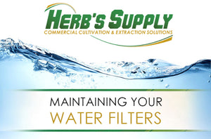 Maintaining Your Water Filters