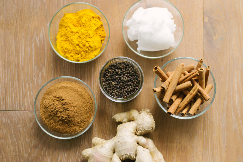 ingredients-golden-paste-fresh-pet-food-pets-in-the-kitchen