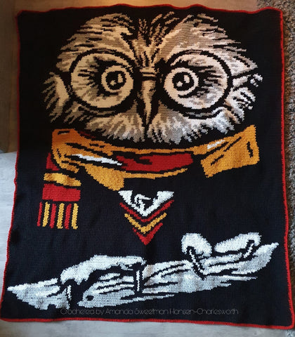 Bubo Goes To Hogwarts Graphghan