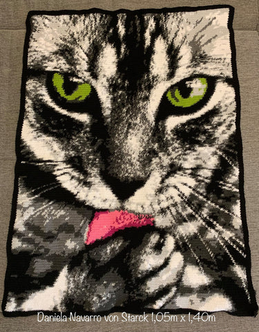 Cat Licking Paw Graphghan