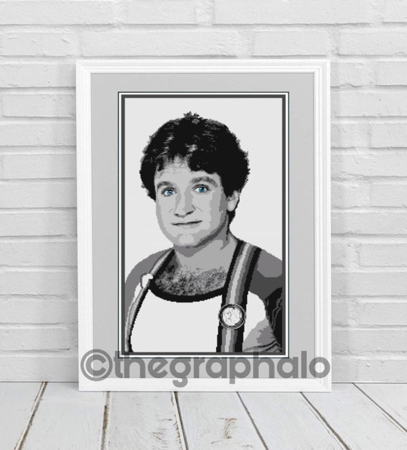 Robin Williams Crochet Photoghan Pattern