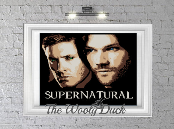 SUPERNATURAL WINCHESTER BOYS inspired graphghan pattern for single crochet/cross stitch/ diamond painting (Sam and Dean Winchester)