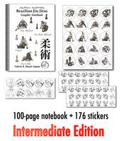 Brazilian Jiu-Jitsu Graphic Notebook - Intermediate Edition