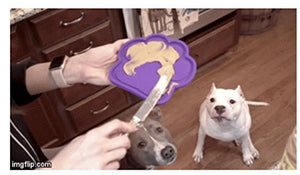 Dogs - The Ultimate Dog Bath Toy - Makes Bath Time Easy, Just Spread Peanut Butter and Stick - Featured on USA Today