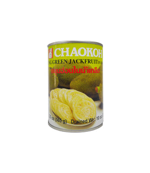 JACK FRUIT IN BRINE (20 OZ)