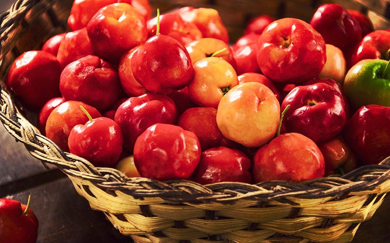 Acerola Vitamin C Content Facts and Figures