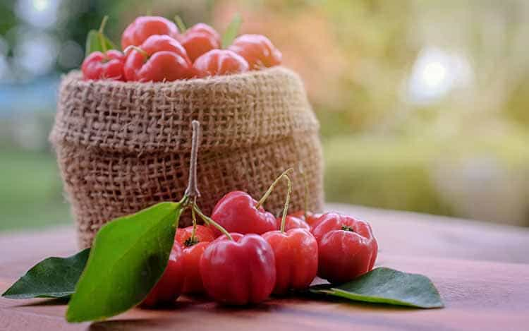 Acerola Cherry: Nutrition Content, Uses, Benefits, and Side Effects