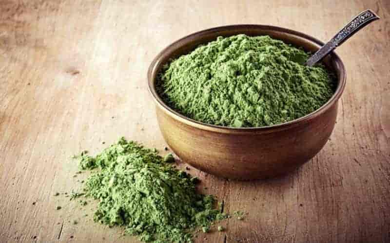 Chlorella: Benefits, Side Effects, and Everything In Between