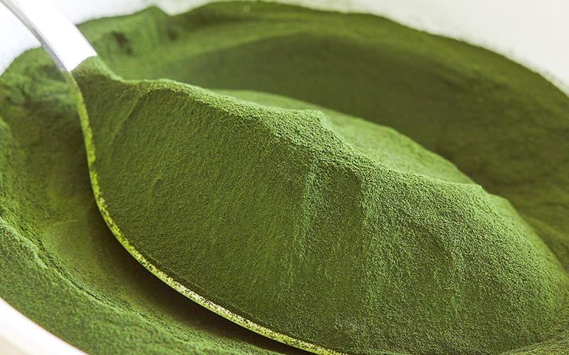 Top Chlorella Benefits for Hair and Skin