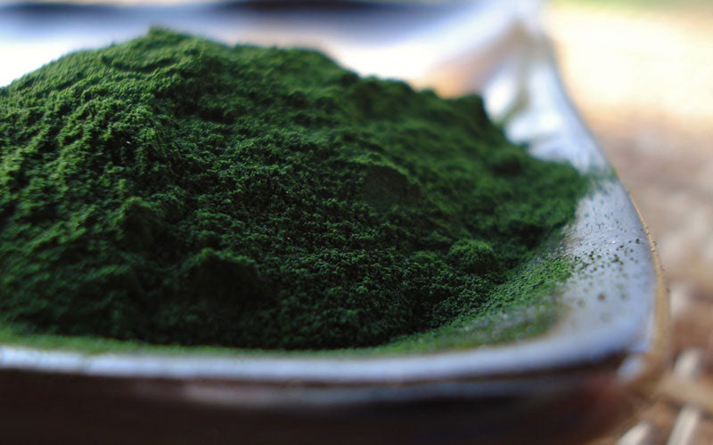 Knowing the Right Chlorella Dosage for Different Uses