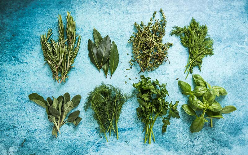 Herbs 101: An A–Z List of Herbs for a Healthier You