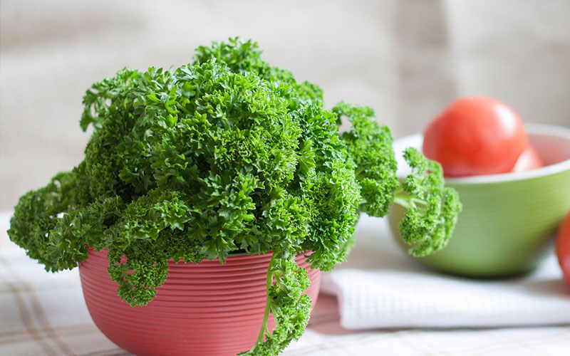 How Parsley Pumps Up Your Life