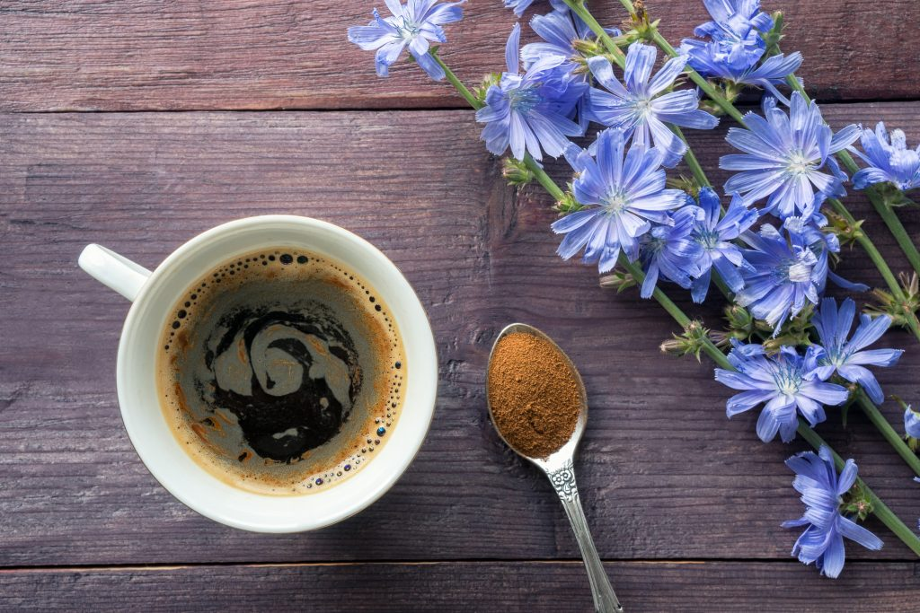 Chicory coffee and flowers
