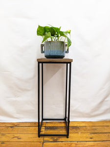 Bensen plant table