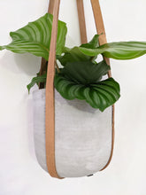 Load image into Gallery viewer, Leather plant hanger