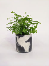 Load image into Gallery viewer, Concrete cylinder by Smith & Goat - 10cm charcoal & white