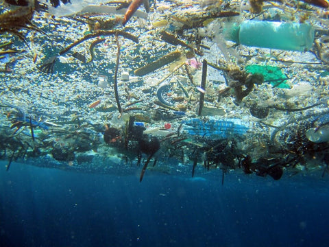 Ocean plastic is a big problem