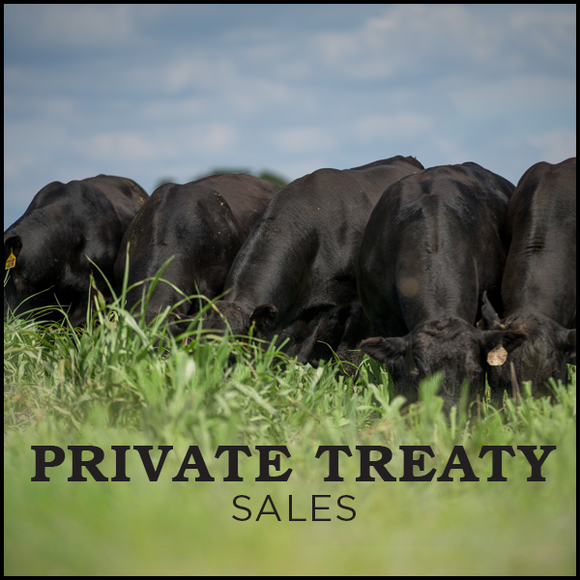 Private Treaty Sales