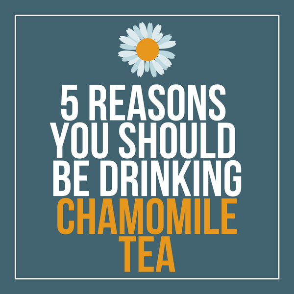5 Reasons You Should Be Drinking Chamomile Tea