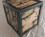Iron Clad - Cube Steel and Pine Lichtenberg Tabletop Scultpure