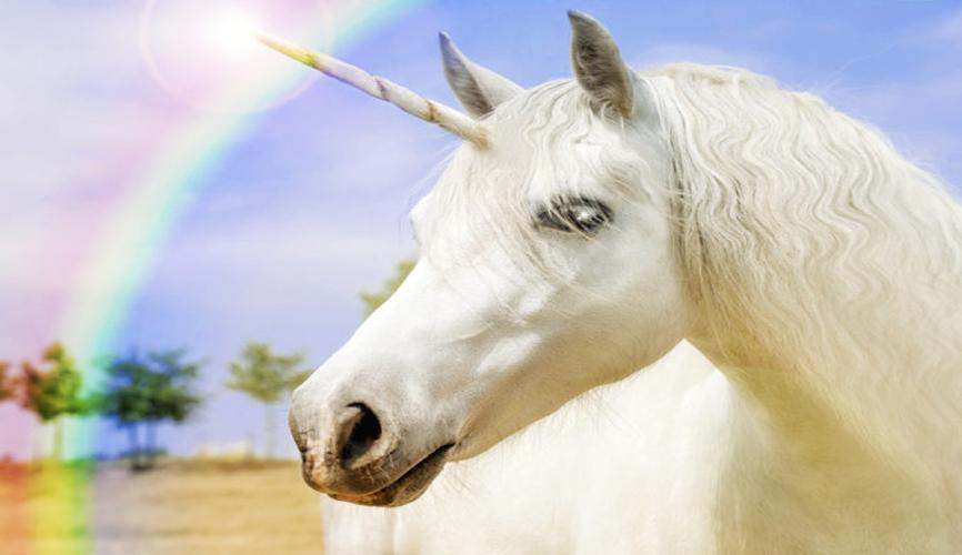 How To Be A Unicorn In 3 Unique Ways