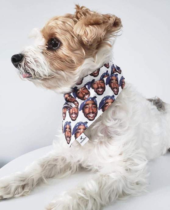 Westside Pet Bandana