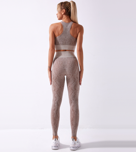 SnakeSkin Women's Seamless Activewear 2 pcs Set, Yoga Suit Long Sleeve with Mesh, Sportswear Skinny Outfit Set, Breathable Top and Legging