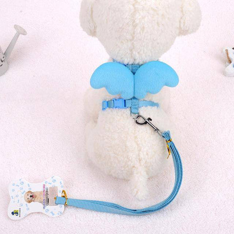 Cute Angel Wings Dog With Leashes