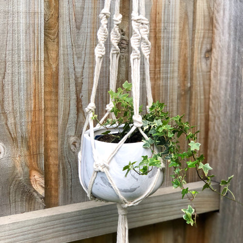 Macrame pot plant hanger made from 100% natural thick cotton cord to display your pre-potted plants. Featuring intricate knot and weave detailing and long tassel suspended from a silver welded 5cms metal ring.