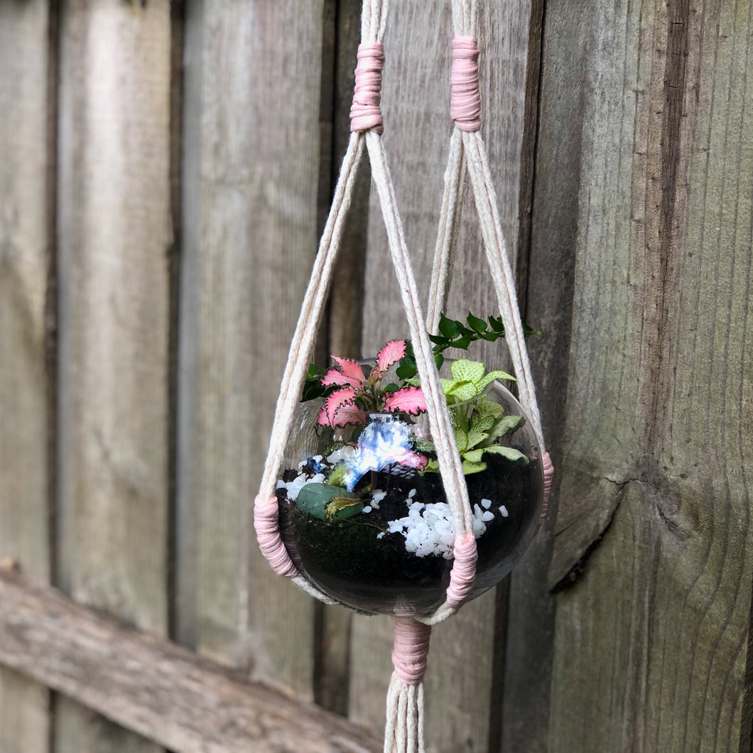 Contemporary rope plant hanger made from 100% natural thick cotton rope, featuring contrast tied detailing and long tassel suspended from a silver welded 3cm metal ring. The elemental design allows the hanger to secure a wide variety of pots.