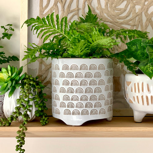 White ceramic decorative planter pot with a pretty outer pattern of mini rainbows etched into the gloss finish.