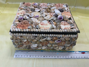 Shell Box Ex Large