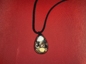 Shell necklace with black cord