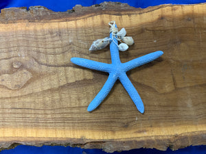 Starfish ornament w/shells