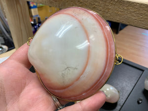 Codakia shell coin purse