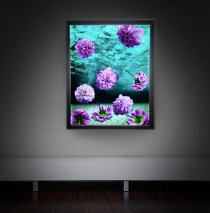 Dahlia Prints and light box