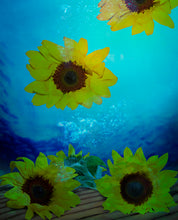 Load image into Gallery viewer, Sunflower Print