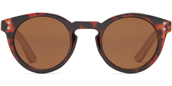 Chatham - Sunglasses (3886333427815)