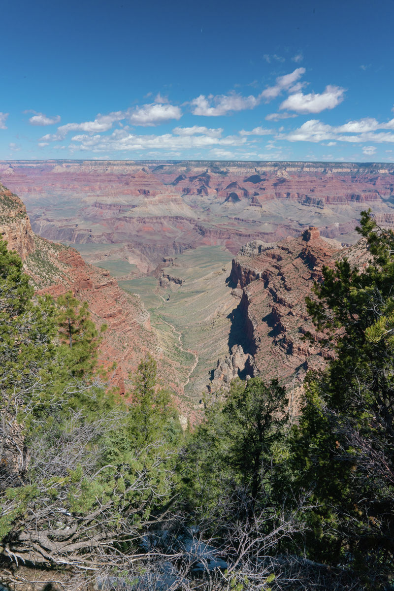 Arizona - Grand Canyon - Potrait