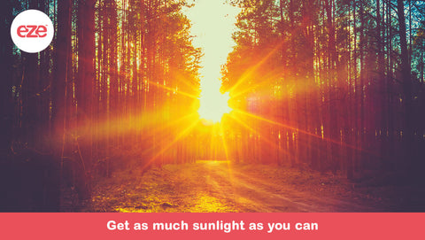 Get As Much Sunlight As You Can
