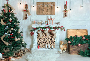 Fire Fireplace Background Christmas Backdrop